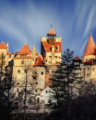 Castle Bran Dracula - Obrázkek zdarma pro Nokia C2-00