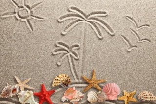 Kostenloses Seashells Texture on Sand Wallpaper für Android, iPhone und iPad
