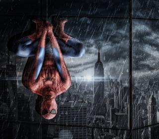 Spiderman Under Rain - Obrázkek zdarma pro 1024x1024