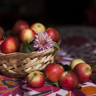 Bunch Autumn Apples - Obrázkek zdarma pro iPad