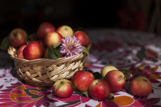 Bunch Autumn Apples Background for Android, iPhone and iPad