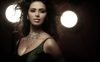 Meenakshi Dixit Hot Background for Android, iPhone and iPad