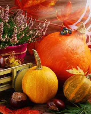 Harvest Still Life - Obrázkek zdarma pro 768x1280