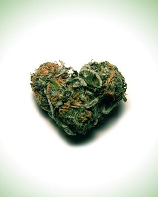 Weed Heart - Obrázkek zdarma pro Nokia Asha 308
