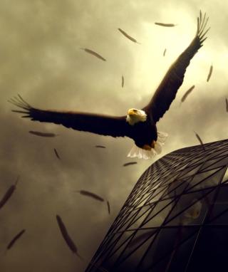 Eagle Flight - Obrázkek zdarma pro Nokia X7