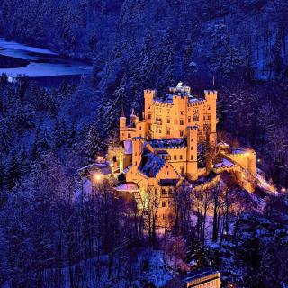 Hohenschwangau Castle - Obrázkek zdarma pro 320x320