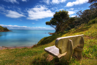 Lonely Bench Wallpaper for Android, iPhone and iPad