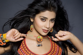 Shriya Saran Actress Picture for Android, iPhone and iPad