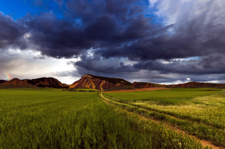 Field and Sky Background for Android, iPhone and iPad