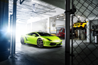 Neon Green Lamborghini Gallardo Wallpaper for Android, iPhone and iPad