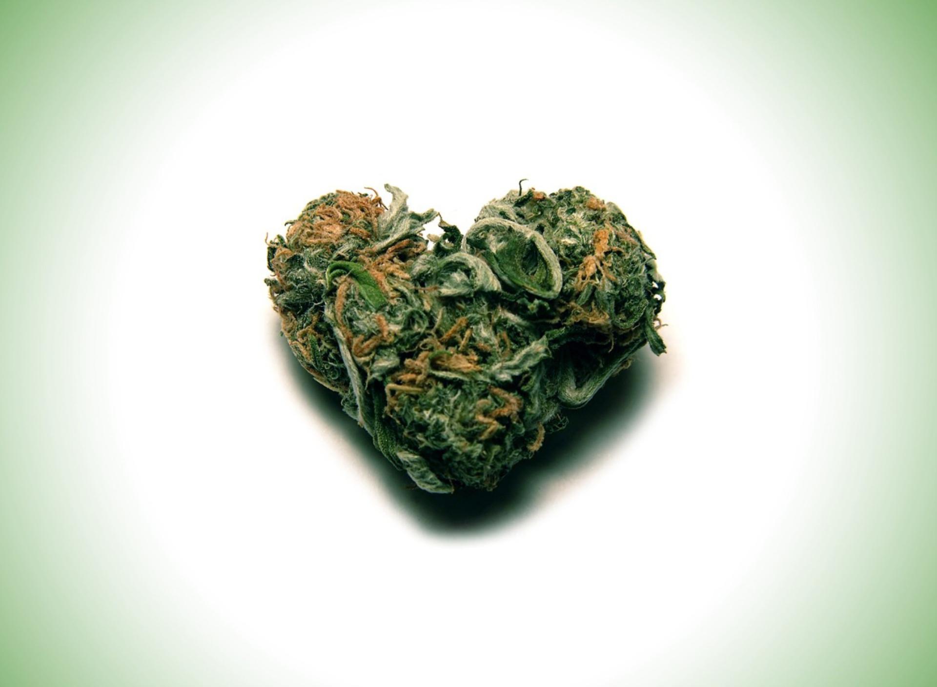 Сердце из зелени  № 1599027 загрузить