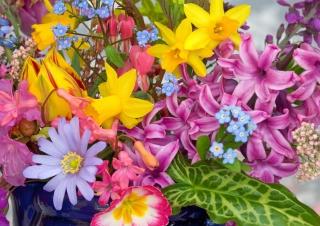 Spring Glamour Flowers papel de parede para celular