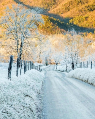 Winter road in frost - Obrázkek zdarma pro Nokia 206 Asha