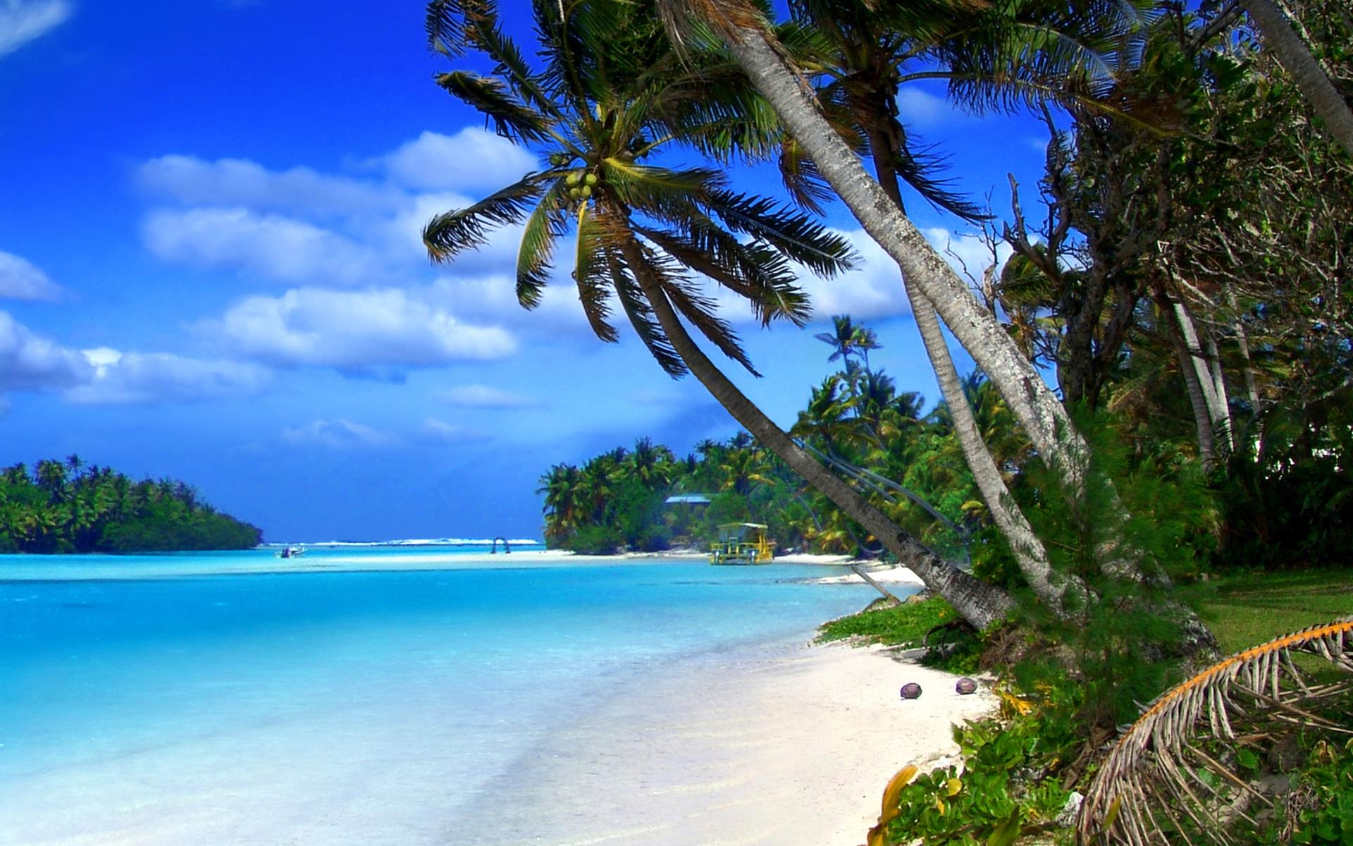 Beach Desktop Wallpaper Widescreen: Beach On Cayman Islands Wallpaper For Widescreen Desktop
