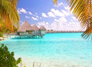 Free Blue Lagoon Island - Bahamas Picture for Android, iPhone and iPad