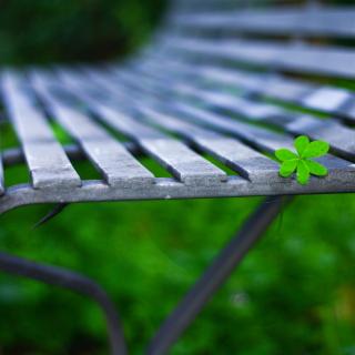 Macro green leaf - Obrázkek zdarma pro 2048x2048