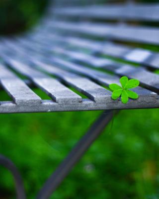 Macro green leaf - Obrázkek zdarma pro Nokia Asha 308
