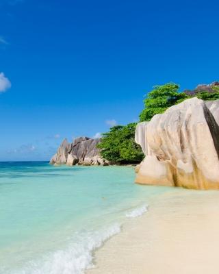 Tropics Sea Stones - Obrázkek zdarma pro 176x220