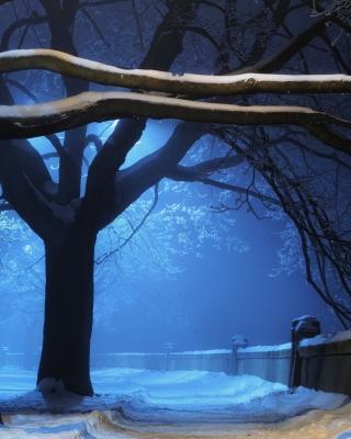 Snowy Night in Forest - Obrázkek zdarma pro Nokia Lumia 720
