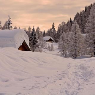 Snowfall in Village - Obrázkek zdarma pro 1024x1024