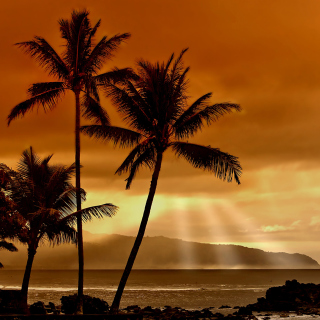 Acapulco Sunset - Obrázkek zdarma pro iPad Air