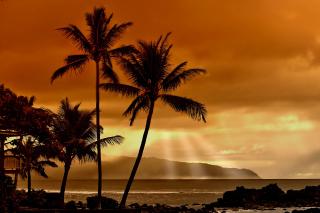 Acapulco Sunset - Obrázkek zdarma pro Samsung Galaxy Ace 3