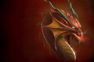 Dragon Head - Obrázkek zdarma pro Nokia Asha 302