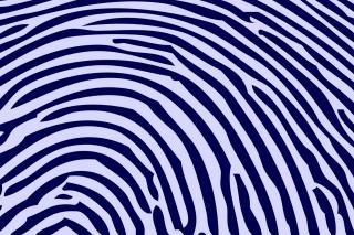 Zebra Pattern - Obrázkek zdarma pro 1600x1280