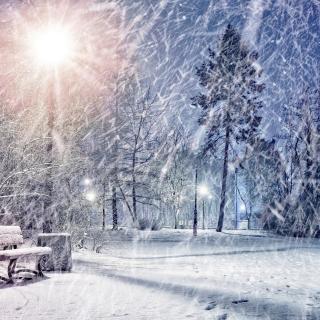 Winter Evening in Park - Obrázkek zdarma pro 1024x1024