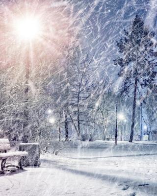 Winter Evening in Park - Obrázkek zdarma pro iPhone 3G