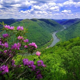 Beautiful Mountain River - Obrázkek zdarma pro 208x208