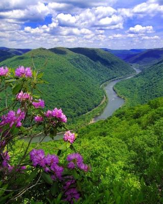 Beautiful Mountain River - Obrázkek zdarma pro Nokia C2-00