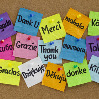 How To Say Thank You in Different Languages - Obrázkek zdarma pro 1024x1024