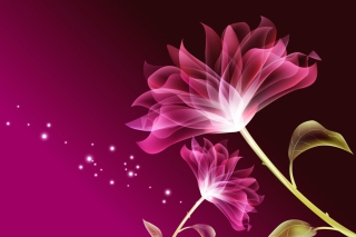 Drawing Flowers Lotus Wallpaper for Android, iPhone and iPad