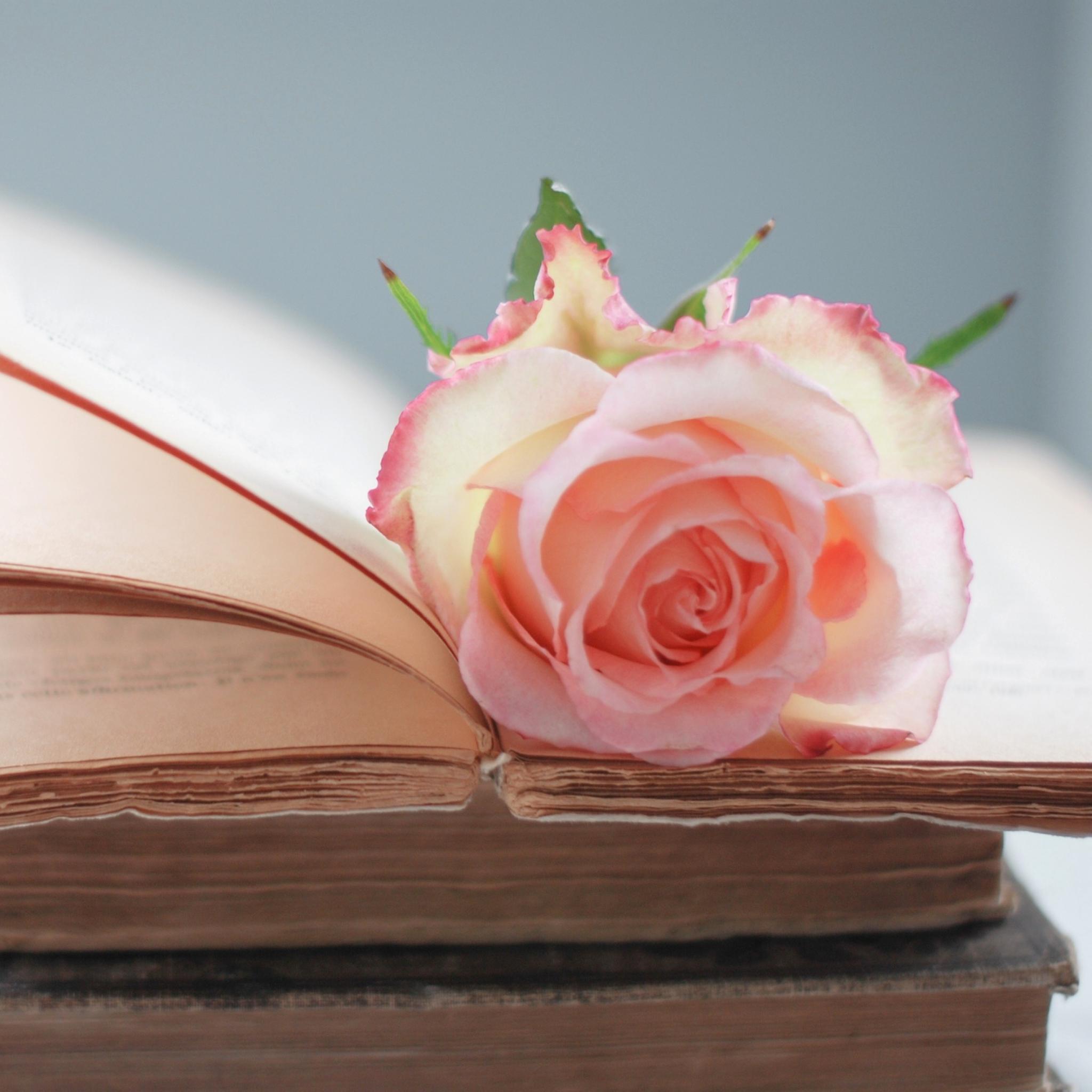 Цветок в книге  № 1489001  скачать