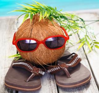 Funny Coconut - Obrázkek zdarma pro iPad 2