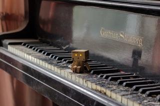 Danbo Pianist - Obrázkek zdarma pro 1280x720