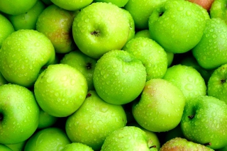 Green Apples Wallpaper for Android, iPhone and iPad