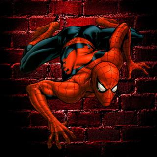 Spiderman - Obrázkek zdarma pro 1024x1024
