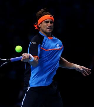 Tennis Player - David Ferrer - Obrázkek zdarma pro Nokia Asha 202