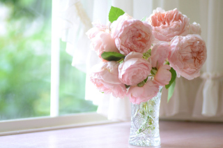 Soft Pink Peonies Bouquet Background for Android, iPhone and iPad