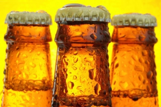 Cold Beer Bottles Picture for Android, iPhone and iPad