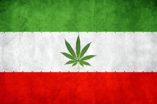 Iran Weeds Flag - Obrázkek zdarma pro HTC One