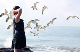 Girl On Sea Coast And Seagulls Picture for Android, iPhone and iPad