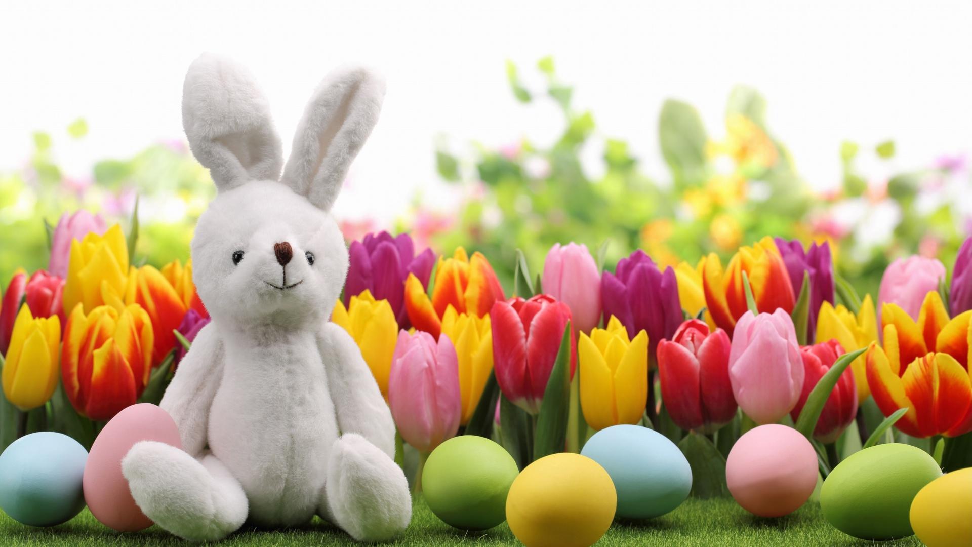 кролик с тюльпанами  № 1144563 без смс