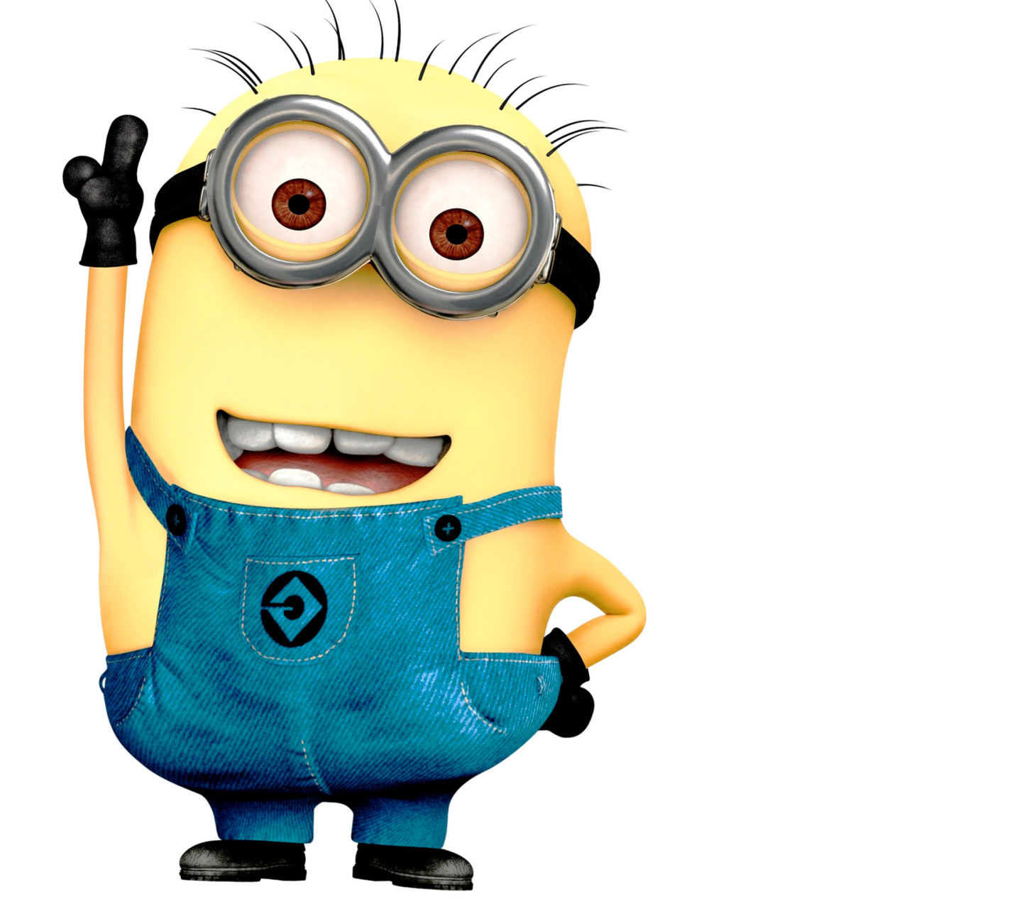 Names of minions and descriptions with individual pictures Pictures of all the minions