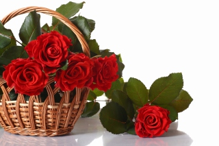 Basket with Roses Picture for Android, iPhone and iPad