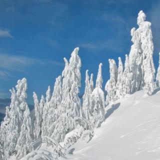 Wintertime - Obrázkek zdarma pro iPad