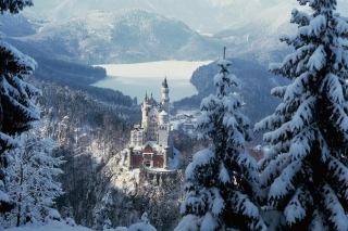 Neuschwanstein Castle in Bavaria Germany Wallpaper for Android, iPhone and iPad