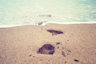 Free Footsteps In Sand Picture for Android, iPhone and iPad